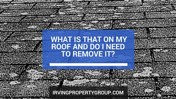 What is that on my roof and do I need to remove it-